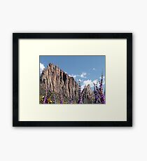 Zions Framed Print