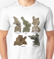 Ancient Macrurosaurus T-Shirt