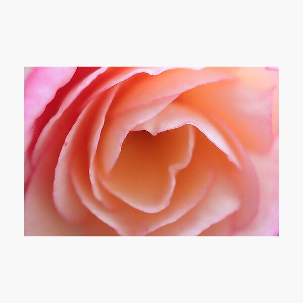 Closeup Beauty Photographic Print