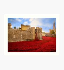 Poppies At Tower Of London Art Print