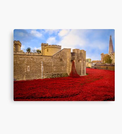 Poppies At Tower Of London Canvas Print