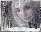 Memories of Winter... by Carol Knudsen