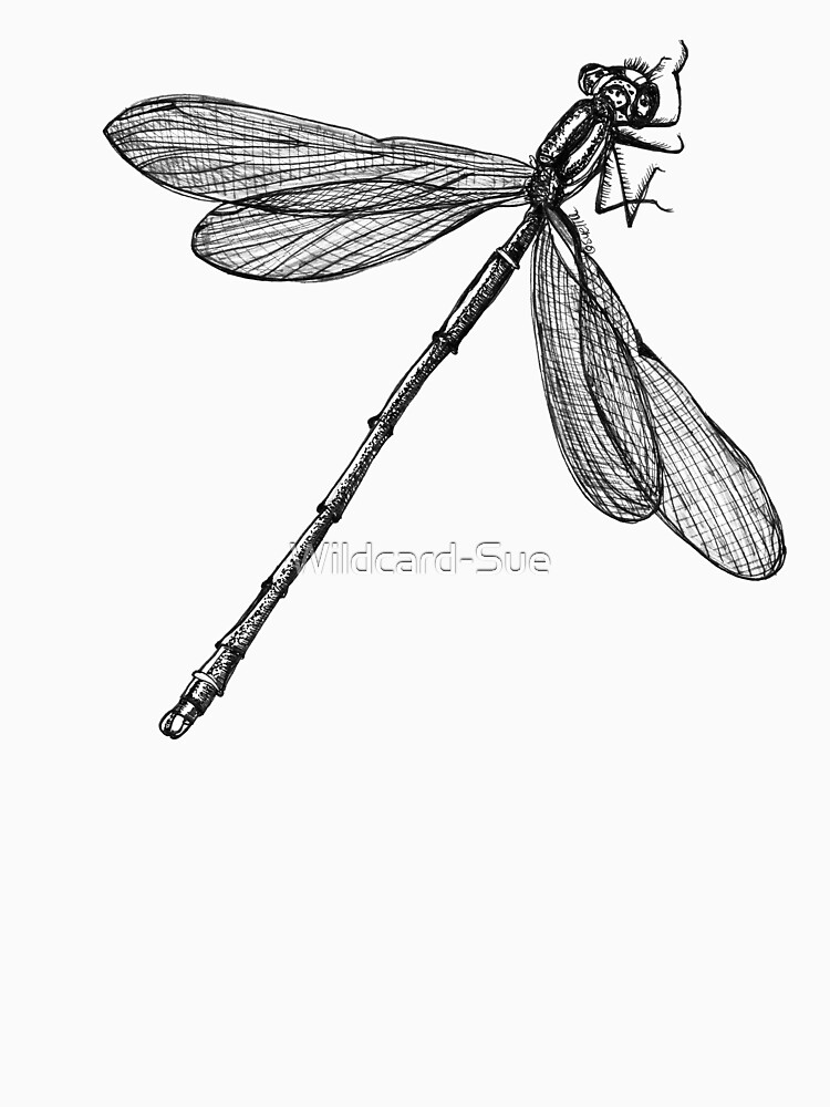 Eve the Dragonfly on the way up by Wildcard-Sue