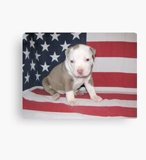 I Am Made In America Canvas Print