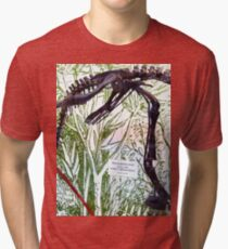 Ancient Hypsilophodon Tri-blend T-Shirt