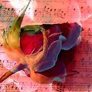 Flaming Love by Kathy Bucari
