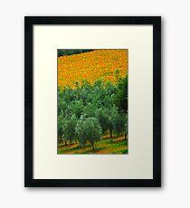 Diagonal Tuscany Framed Print
