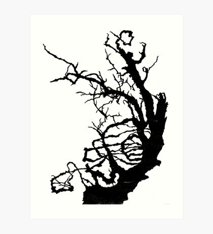 Gnarly Tree Art Print