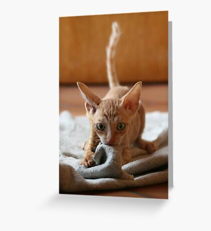 Smeagol Greeting Card