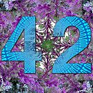 Forty Two - the number 42 has a distinct meaning to certain people by Warren Paul Harris