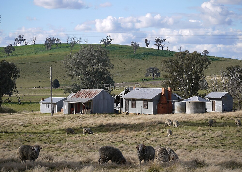 Ye Olde Aussie Shearing Quarters by SharonD