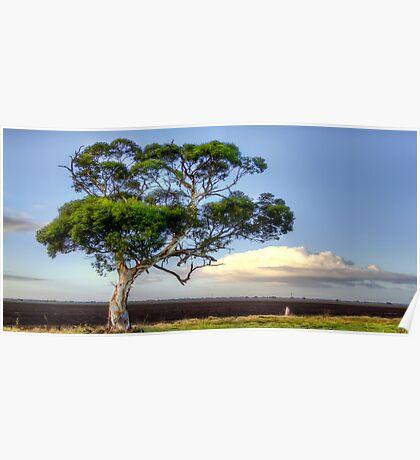 An Aussie Gumtree Poster