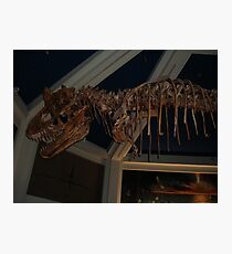 Monstrous Carnotaurus Photographic Print