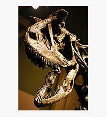 Super Carnotaurus Photographic Print