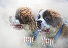 Saviours In The Snow by Trudi's Images