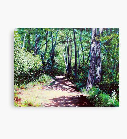 'Sun Shower on the Glen Burney Trail' Canvas Print