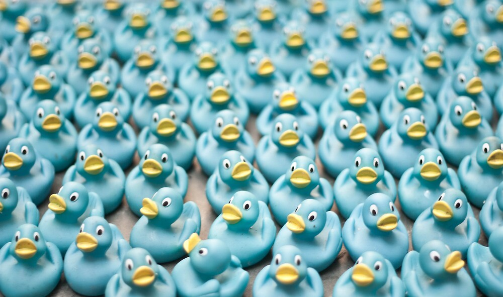 A Sea of Rubber Ducks by Daniel Williams