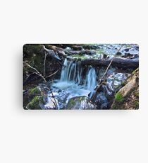 HDR Forrest Waterfall Canvas Print