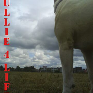 BULLIE 4 LIFE by CraigyD85