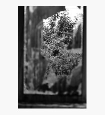 Looking through. Photographic Print