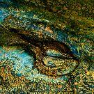 Eye of the Crocodile III [Print & iPad Case] by Damienne Bingham