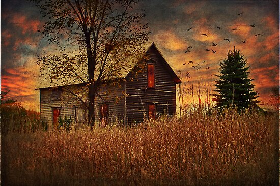 Old Farmhouse by Megan Noble