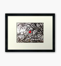 Deflated Red Balloon in a Tree Framed Print
