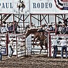 wild ride st paul rodeo by Jeannie Peters