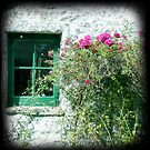 Little barn window by sue mochrie