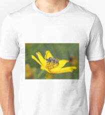Eucerini Bee on Bidens flower T-Shirt