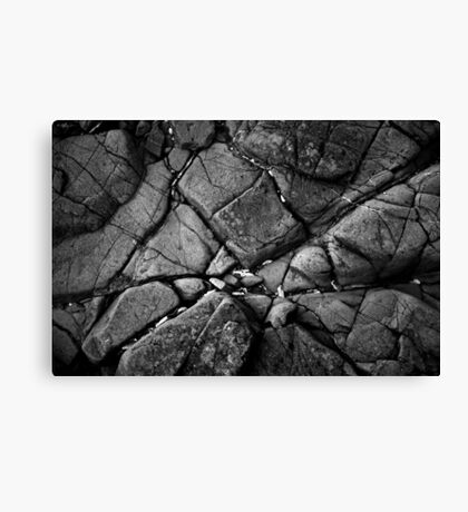 Seems Like There's a Hole In My Dreams Canvas Print