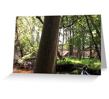 Naturescape 83 Greeting Card