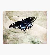 Hold me gently (textured version) Photographic Print