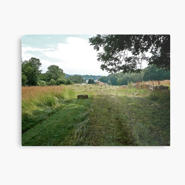 Road to the Hayfield - CT Series Metal Print