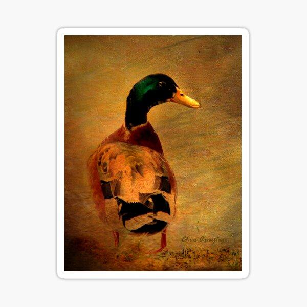 A duck ... Sticker