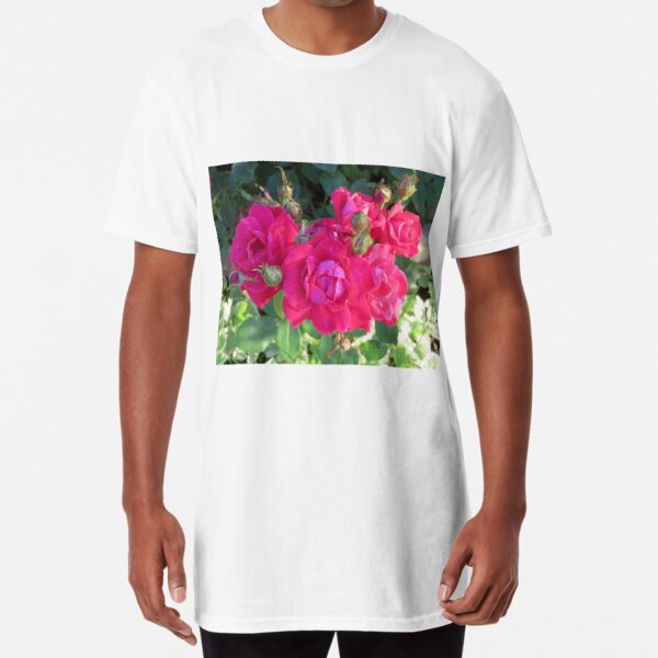 Beautiful old fashioned red roses Long T-Shirt