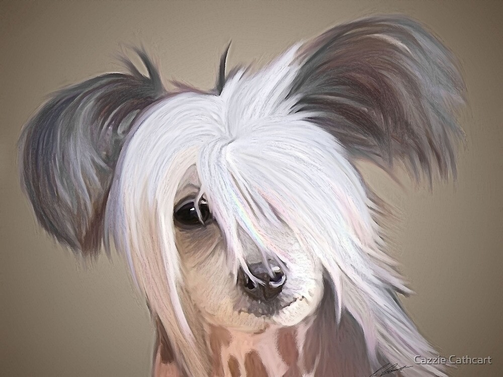 Aponi the chinese crested by Cazzie Cathcart