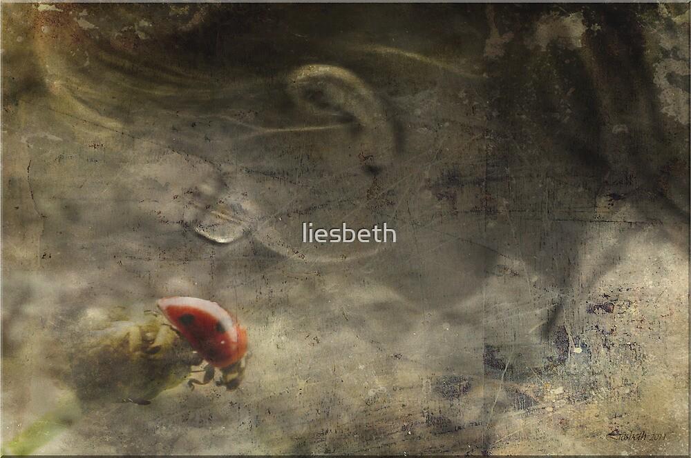BEwonderment by liesbeth
