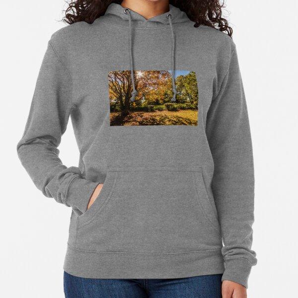 Autumn Tones Lightweight Hoodie