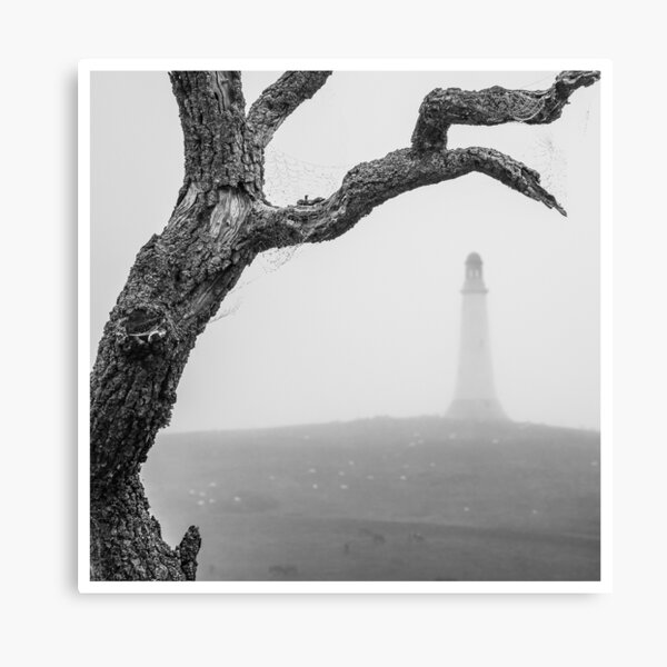 Misty Hoad Canvas Print