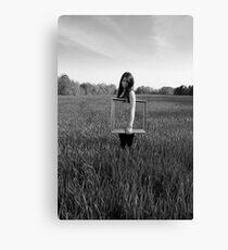 Frames series: Untitled 1 Canvas Print