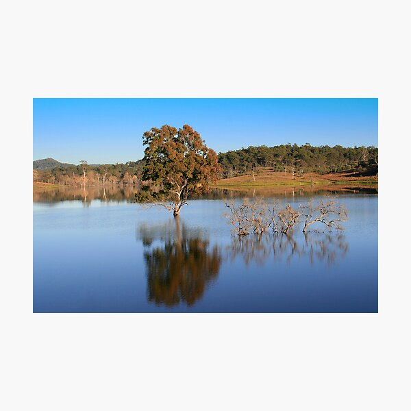 Wyaralong reflection Photographic Print