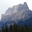 Castle Mountain by Leslie van de Ligt