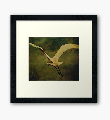 Aerial Framed Print