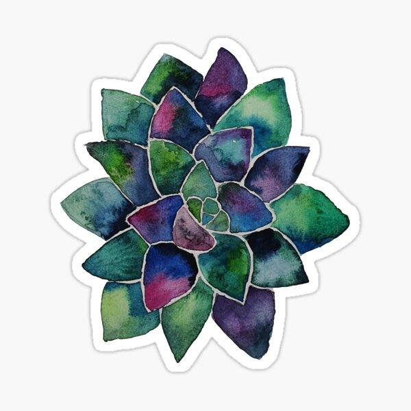 Succulent watercolor  Sticker