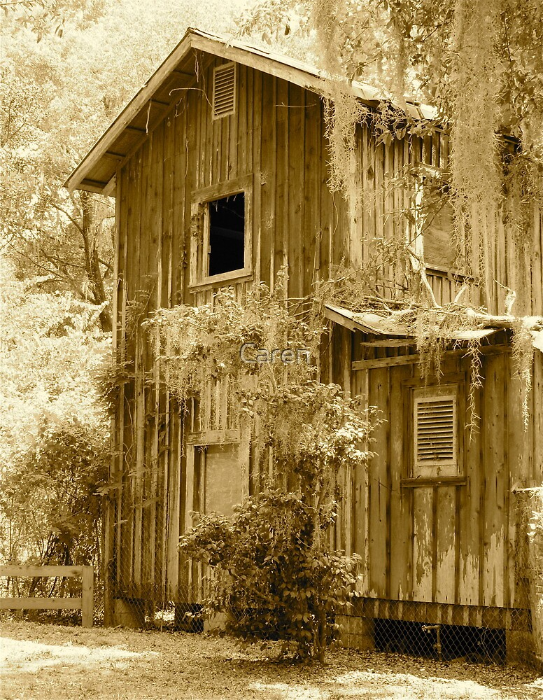 Abandoned  by Caren