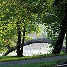 River Arch by Hank Eder