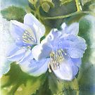 Blue Floral Abstract by Joan A Hamilton