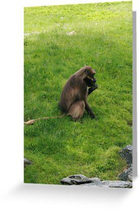 Monkey greeting cards by jaxfireworks redbubble monkey by jaxfireworks m4hsunfo