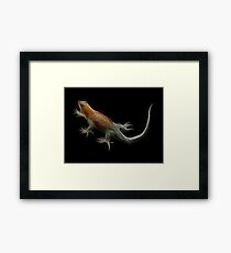 Medicine Wheel Totem Animals by Liane Pinel- Lizard Framed Print